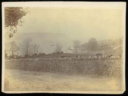 Photograph - Swanage Dorset ENGLAND - Alte (vor 1900)
