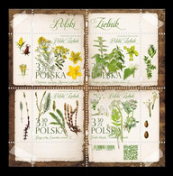Poland 2020 Mih. 5234/37 (Bl.300) Flora. Herbaceous Plants MNH ** - Unused Stamps