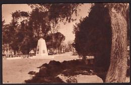 Argentina - Tarjeta Postal - Patagonia - Rio Colorado - Rio Negro - Pza San Martin - Circa 1930 - No Circulada - A1RR2 - Argentinië