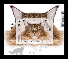 Slovenia 2020 Mih. 1439 (Bl.126) Fauna. Domestic Cats MNH ** - Slovenië