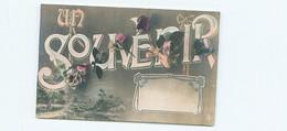 Fantaisie - Un Souvenir  Fleurs   N 1723 - Andere