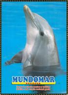 Benidorm - Mundomar (parc Zoologique Pour Animaux Marins Et Exotiques) - Dauphin - Spagna