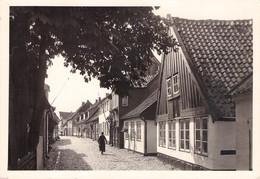 SCHLESWIG - HOLM /ak619 - Schleswig