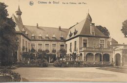 Bioul - Château De Bioul - Vue Du Château, Côté Parc - *339* - Anhée