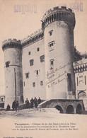 13  Tarascon  Chateau Dit Du Roi Rene - Tarascon