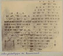 """Arbre Généalogique Des """" Montrichard """". Noblesse. 1909. Album De L'historien Gérard De Beauregard. - Andere"""