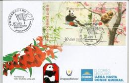 URUGUAY. Panda Géant & Tamandua Austral Des Savanes (Ours à Miel) Emission Conjointe URUGUAY-CHINE FDC 2018 - Bears
