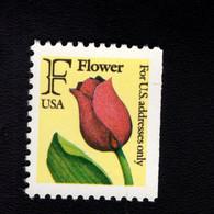 207619333 SCOTT  2519 POSTFRIS MINT NEVER HINGED EINWANDFREI - FLOWERS FLORA TULIP RIGHT SIDE IMPERFORATED - Neufs