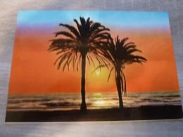 ALICANTE - AMANECER ALICANTINO SUNRISE - EDITIONS VIPA - - Alicante