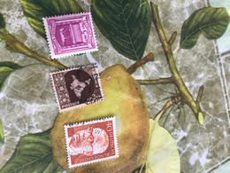 INDIA MAPPA GEOGRAFICA  1 VALORE - Stamps