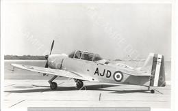 PHOTO AVION NORD 3202  N°01      ARCHIVE ECPA   12X17CM - Aviation