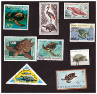 Lot De 50 Timbres Différents De Tortues - Schildkröten