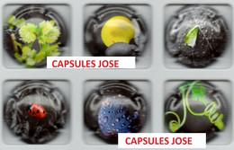 Série De 6 Capsules De Champagne  - GENERIQUE (Nature - Septembre 2020) - Colecciones