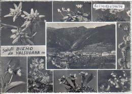BIENO - Trento