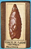 Préhistoire, Néolithique, Pointe De Flèche En Bois Fossile Taillé. Neolithic. - Arqueología
