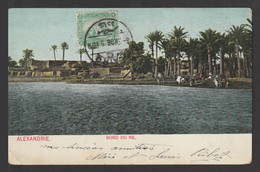 Egypt - Rare - Vintage Post Card - Edge Of The Nile - 1866-1914 Khedivate Of Egypt