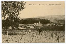 Polisy. Aube. Vignobles Renommés. Vins De Champagne. Vigneron Et Son Fils. - Mussy-sur-Seine