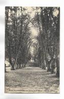 70 - ( Luxeuil-les-Bains ) - Ecole St-Colomban - Le Champ De Récréation - Allée Des Tilleuls - Luxeuil Les Bains