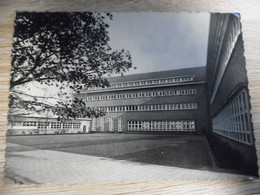 Collège St Henri COMINES - Autres