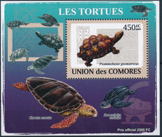 D - [38714]TB//**/Mnh-Comores 2009 - BL1498, Bloc Spécial, Animaux & Faune, Reptiles & Batraciens, Les Tortues. - Tartarughe