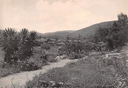La ROQUEBRUSSANNE - Vue Générale Prise Des Rocailles - La Roquebrussanne