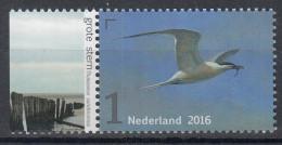 Nederland - Griend: Vogels Van Het Wad - Grote Stern - MNH - NVPH 3401 - Möwen