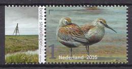 Nederland - Griend: Vogels Van Het Wad - Bonte Strandloper - MNH - NVPH 3405 - Sonstige