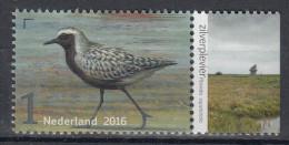 Nederland - Griend: Vogels Van Het Wad - Zilverplevier - MNH - NVPH 3406 - Ohne Zuordnung