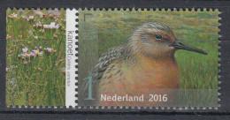 Nederland - Griend: Vogels Van Het Wad - Kanoet - MNH - NVPH 3409 - Sonstige
