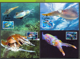 Nbx448mb WWF FAUNA 'VISSEN FISH FISCHE' INKTVIS CARIBBEAN REEF SQUID KARIBISCHER RIFFKALAMAR NEVIS 2009 MAX - Cartes-maximum