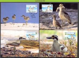 Nbx447mb WWF FAUNA VOGELS BEACH THICK-KNEE RIFFKALAMAR RIFFTRIEL BIRDS VÖGEL AVES OISEAUX VANUATU 2009 MAX - Cartes-maximum