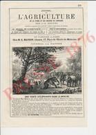 2 Vues 1876 Vente D'éléphants Mysore India Inde Ali Ben Sou Alle (Charles-Jean-Baptiste Soualle Saxophoniste) 231CH23 - Unclassified