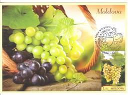 2020  MOLDOVA ,  MOLDAVIE ,  MOLDAU  ,  National Wine Day , Vine , Vino , Grapes , Maxicard , Special Cancell - Wein & Alkohol
