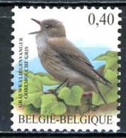 BE   3265   XX    ---   Gobemouche Gris  --  Bel état - 1985-.. Birds (Buzin)