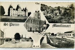 49 - SAINT PIERRE MONTLIMART - Multivues - Other Municipalities