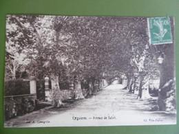 EYGUIERES  ( 13 ) Avenue De SALON - Eyguieres