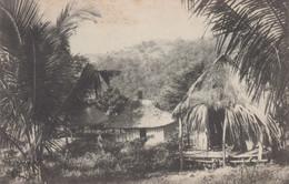 POSTCARD EAST TIMOR - TIMOR PORTUGUÊS - OLD PORTUGUESE COLONY - TRECHO DE UMA POVOAÇÃO INDIGENA - East Timor