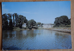 35 : Paimpont - L'étang De L'Abbaye - Plan Inhabituel - Petits Plis - (n°18674) - Paimpont