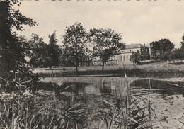 LA  RAMEE , ( Jauchelette , Jodoigne )  ,  Vue Générale Au Delà De L'étang - Jodoigne