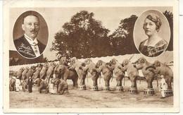 KRONE . GROSSE CIRCUS EUROPAS . ELEPHANTS - Cirque