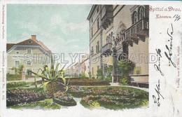 OLD  POSTCARD - LITHO -  AUSTRIA - SPITTAL A. DRAU - VIAGGIATA 1901 -T109 - Spittal An Der Drau