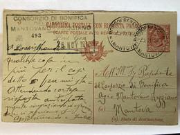 Italia Cartolina Intero Postale 10 C. Con Risposta Pagata Viaggiata Per Mantova Da Borgofranco Con Tassello Consorzio. - Mantova