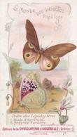 """AIGUEBELLE, Le Monde Des Insectes, Papillons, """" Hiade D'Horsfield - Argynne Pandore """" - Aiguebelle"""