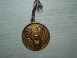 Médaille Lalique Journée Des Prisonniers De Guerre 1914-1918 - 1914-18