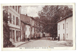 20 Bocognano, Avenue De Colletta. Voir Description (6220) - Sonstige Gemeinden