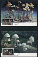 SALE  Thailand 1993 4 Maximum Card  Mushrooms - Pilze