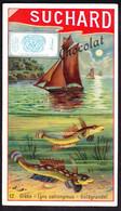 CHROMO Chocolat SUCHARD  Grèbe   Poisson  Bateaux Fish  Boot Fishing  Serie 186 - Suchard