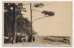 ANDERNOS LES BAINS EN 1929 - PETITES DUNES AU BETEY - CPA VOYAGEE - Andernos-les-Bains