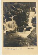 Wasserfall  - Verlag Max Baur Wernigrode [Z33-5.556 - Non Classés