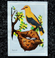 Image Chocolat FAVARGER - Série B Les Nids D'oiseaux - N° 14 LORIOT - Otros